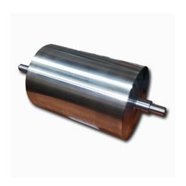 magnet roller-2.jpg